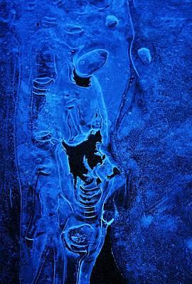 Photograph - Iceman by Sean Sarsfield