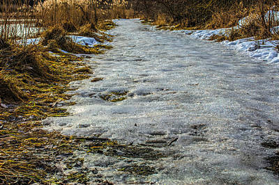 Photograph - Icy Path #i4 by Leif Sohlman