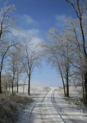 Photograph - Icy Path by TJ Fox