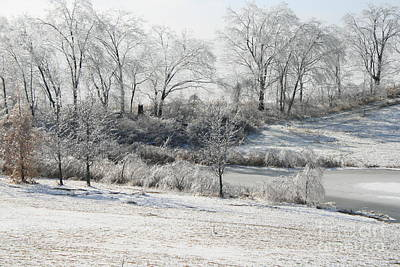 Photograph - Icy Wonderland by TJ Fox