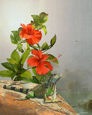 Digital Art - Iguana And Hibiscus Flowers by M Spadecaller