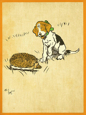 Drawing - Puppy And Hedgehog, Illustration Of by Cecil Aldin