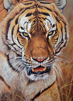 Painting - I'm No Kitten - Tiger by Alan M Hunt
