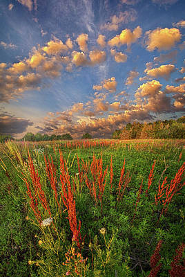 Photograph - I'm Right There In Your Heart by Phil Koch