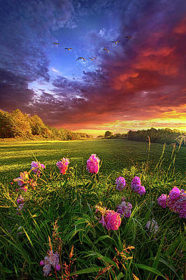 Photograph - Imagine No Limitations by Phil Koch