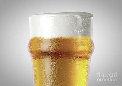 Beer Royalty-Free and Rights-Managed Images - Imperial Pint Beer Pint by Allan Swart
