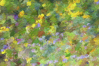 Mixed Media - Impressions Of Golden Poppies by Peter Tellone