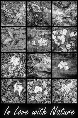 Photograph - In Love With Nature Black And White by Debra and Dave Vanderlaan