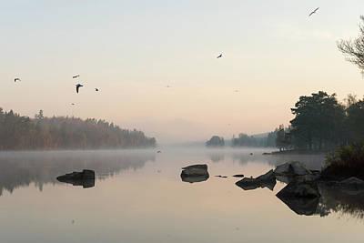 Amy Weiss - in Sweden... wonderful morning mood  by Ralf Kistowski