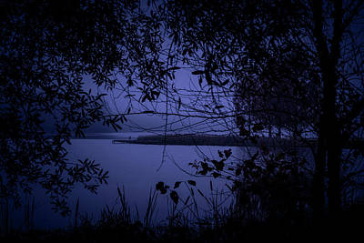 Photograph - In The Darkness by James L Bartlett