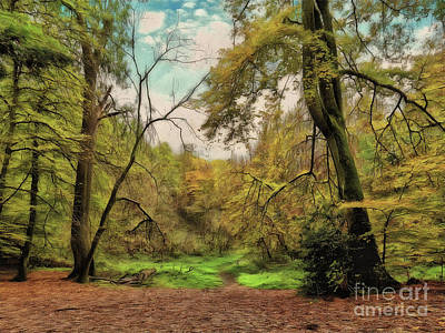 Photograph - In The Woods by Leigh Kemp