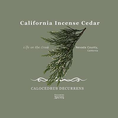 Digital Art - Incense Cedar - White Text by Lisa Redfern