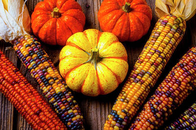 Photograph - Indian Corn And Mini Pumpkins by Garry Gay