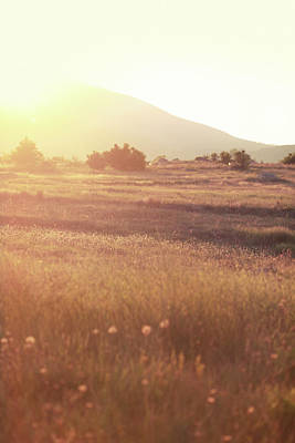 Photograph - Indian Summer Nature Meadow by Lechatnoir