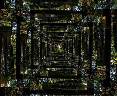 Surrealism Digital Art - Infinity Tunnel Forest Sunburst by Pelo Blanco Photo
