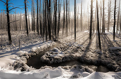 Photograph - Inhale The Winter by Karen Wiles