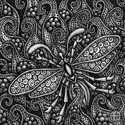 Drawing - Insect Botanical Ink 3 by Amy E Fraser