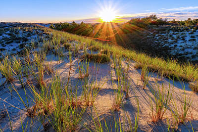 Photograph - Into The Sun, Crane Beach by Michael Hubley