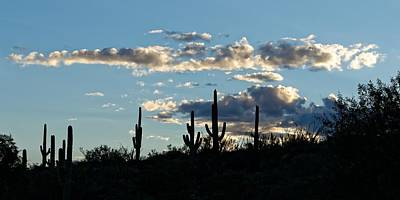 Photograph - Into The Sunset - Saguaro by KJ Swan