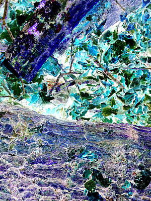Photograph - Invert Leaves Abstract by Artist Dot
