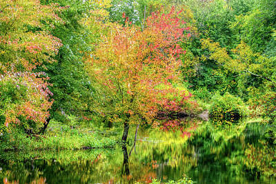 Photograph - Ipswich River Reflections, Topsfield Ma.  by Michael Hubley