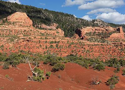 Photograph - Ir-13 Hillside 1 by Tom Daniel