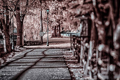 Photograph - Ir Trail In Town by Dan Urban