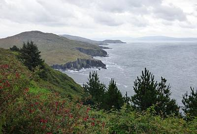 Olympic Sports - Irish Coastal by Melinda Saminski