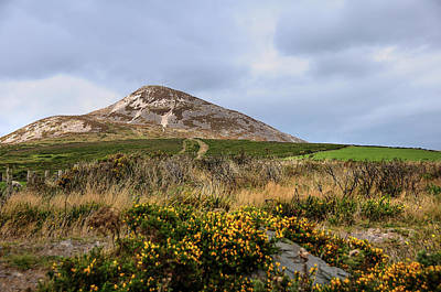Photograph - Irish Idyll. Sugarloaf Hill 3 by Jenny Rainbow