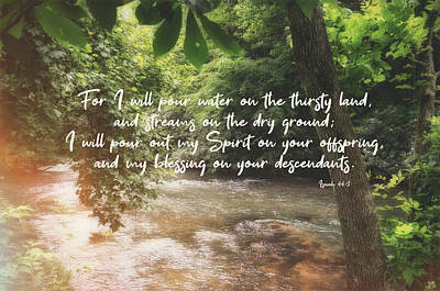 Photograph - Isaiah 44 3 #bibleverse #scripture by Andrea Anderegg