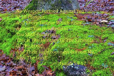 Photograph - Isaiah 54 17 Moss And Leaves Ground Cover by Lisa Wooten