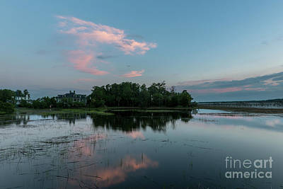 Animal Portraits - Island Clouds by Dale Powell