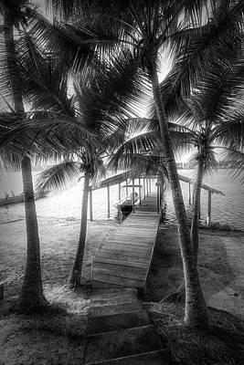 Photograph - Island Dock Under The Palms by Debra and Dave Vanderlaan