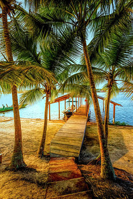 Photograph - Island Dock Under The Palms In Hdr Detail by Debra and Dave Vanderlaan