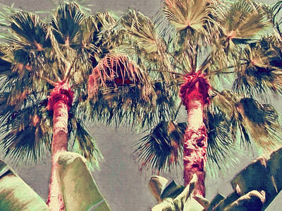Photograph - Island Palms by HH Photography of Florida