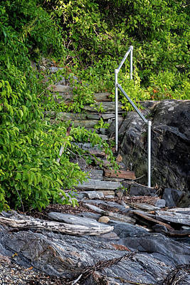 Photograph - Island Steps by Tom Singleton