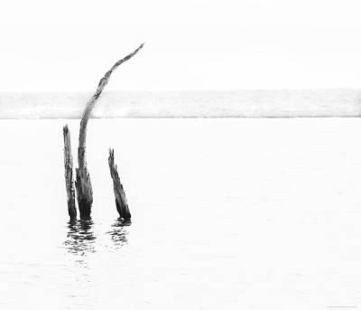 Photograph - Isolation by Denise Dube