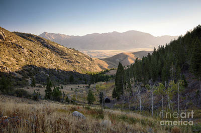 Photograph - Isolation by Idaho Scenic Images Linda Lantzy