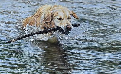 Painting - I've Got It By Alan M Hunt by Alan M Hunt