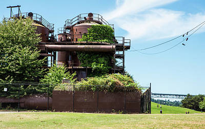 Photograph - Ivy Tanks And Hanging Sneakers by Tom Cochran