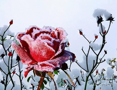 Mixed Media - Jack Frost by Morag Bates