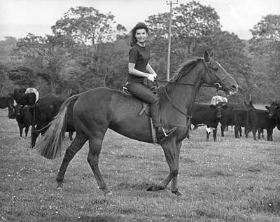 Photograph - Jackies Horse by Keystone