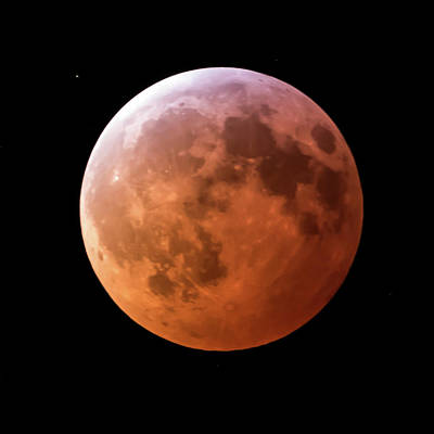 Photograph - January 2019 Super Blood Wolf Moon Lunar Eclipse Square by Terry DeLuco