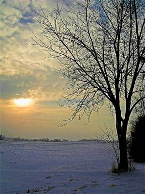 Photograph - January Landscape by Diane Chandler