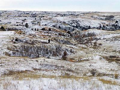 Photograph - January Prairie by Cris Fulton