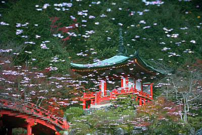 Photograph - Japan, Kyoto, Ueno Park, Reflection Of by Kaz Chiba