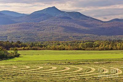 Lady Bug - Jay Peak September Landscape by Alan L Graham