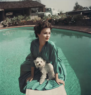 Photograph - Jean Simmons by Baron
