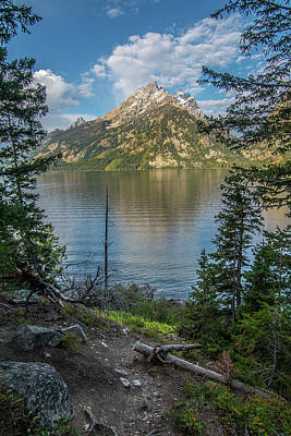 Photograph - Jenny Lake Morning by Matthew Irvin