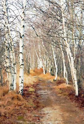 Photograph - Jessup Path In Winter - Oil by Gordon Ripley